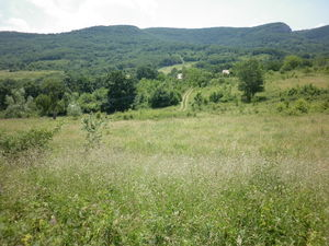 Spacious plot of land with great views and access to road