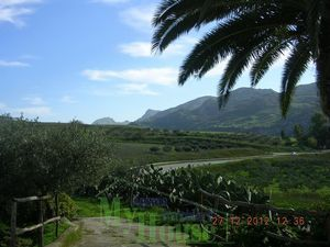 Villa and land in Sicily - Villa Perconti Cda Mavaro