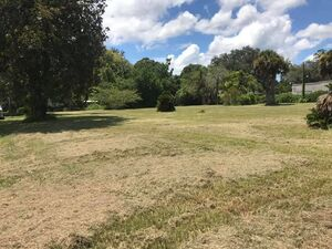 Commercial/Residential Land for Sale in Hawthorne FL.
