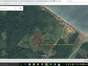 Farm land for sale EUR$28,728.00! - Two hectares (20,000m2)