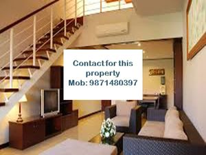 all type flats for rent in chattarpur please call me