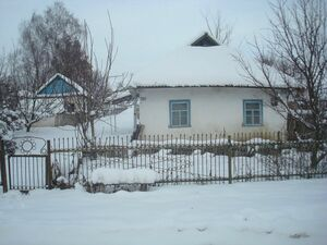 Great value cottage with land 2 Hours from Kyiv
