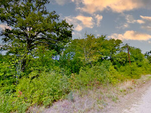 Two lots in the great community of Mabank - Texas 75156