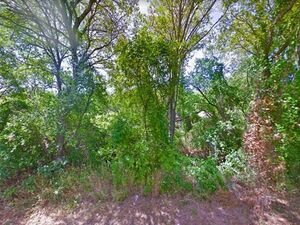 Great investment! Vacant Land for Sale - Whitney TX 76692