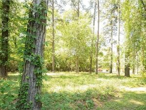 2 pristine lots in a Lakeside Community- Montgomery TX 77316