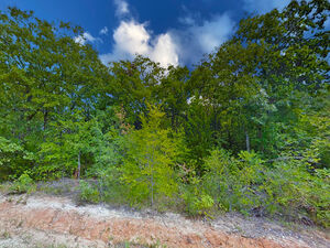 2 magnificent lots for your mobile home – Chicota St, Mabank
