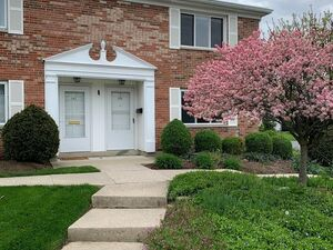 Beautiful 2 bed 2 bath house for rent in Dayton