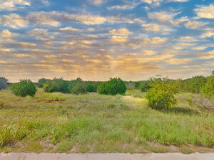 Come home to White Bluff! - 1053 White Bluff Dr Whitney TX