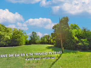 Great for any family, looking to build a home - TRINIDAD TX