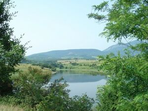 Agricultural land for investment with panoramic views