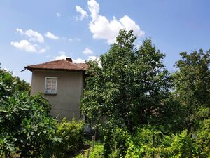 Large 4/5 bedrooms house for sale in Burya (Gabrovo)