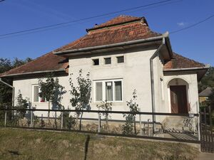 House and land for sale at the countryside in Transylvania