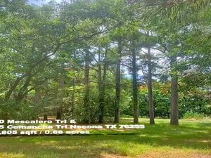 Picture-perfect Hill Country Lots in Montague County, TX