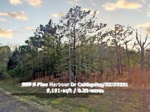 Investing in land? Start here. 0.21 Acre in Coldspring