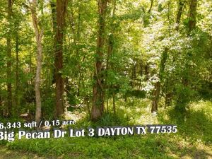 Want to Own A Piece Of Wilderness? - DAYTON TX 77535
