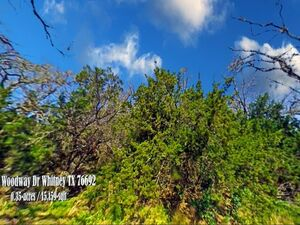 Unlimited potential, Tranquil setting - Whitney TX 76692