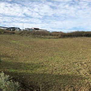 Arable and buildable - 1.25 hectares for sale in Apice