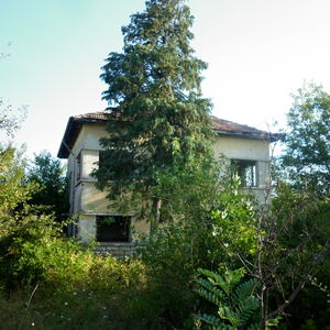 Old rural house with quiet location and nice views near city