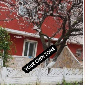 Incredible Deal on a Villa in Istanbul 800 meters from metro