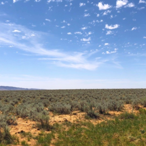 Land 10890 sqft in Los Lunas, New Mexico